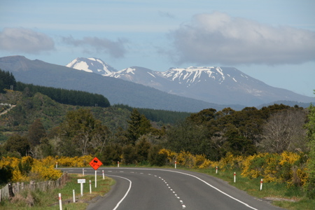 Road past volcanoes