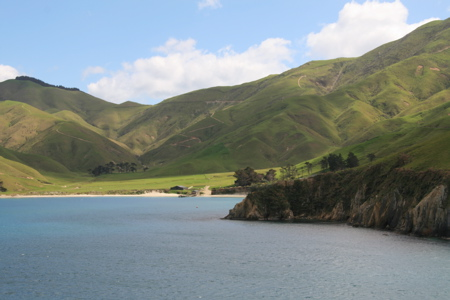 Sailing through Marlborough Sounds