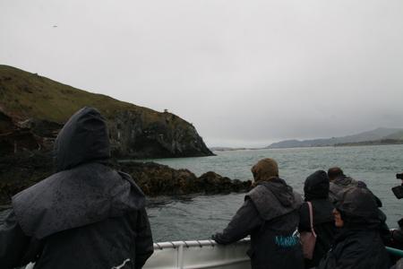 Dunedin on boat