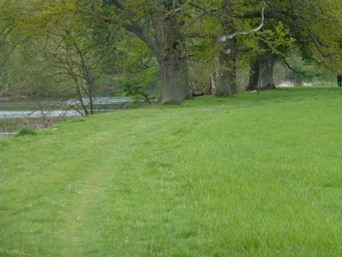 St cuthberts way beside river
