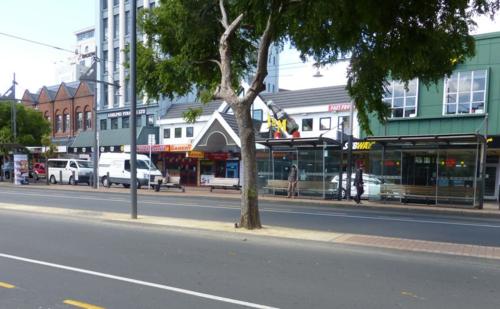 Waiting tree