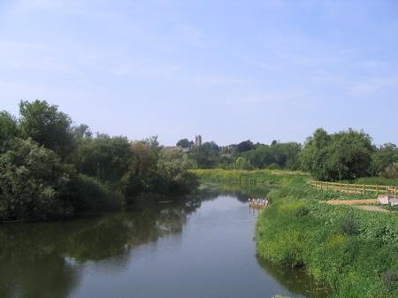 River_parrett_trail